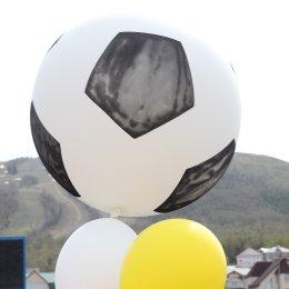 «День массового футбола» на стадионе «Спартак» собрал свыше полутысячи участников