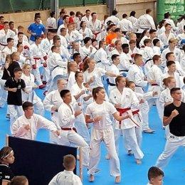 Сегодня сахалинские каратисты отправились в Уссурийск на чемпионат и первенство ДФО