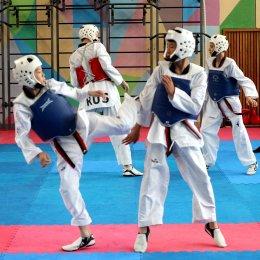 Островные тхэквондисты завоевали четыре медали всероссийских соревнований в Москве