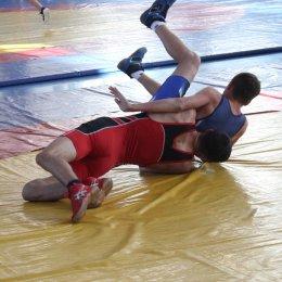 Воспитанники ГБУ «СШ самбо и дзюдо» завоевали семь медалей областного турнира