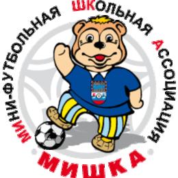 Команда СОШ № 8 выиграла областной этап всероссийского проекта «Мини-футбол в школу»