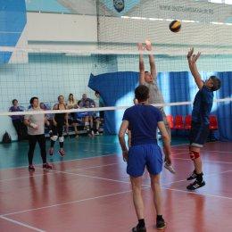 Команда областной Думы выиграла турнир по волейболу в рамках спартакиады ОИВ