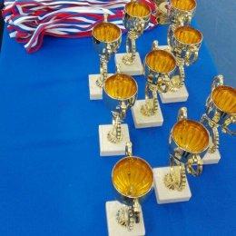 Сахалинские самбисты завоевали шесть медалей Спартакиады учащихся ДФО