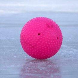 Укротят ли сахалинцы «Плетеный мяч»?