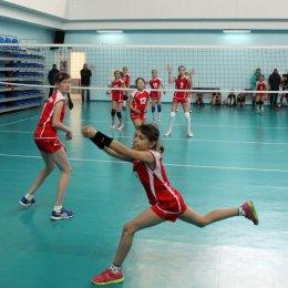 Волейболисты не старше 14 лет определят победителей первенства области
