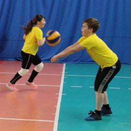 Волейбольный день