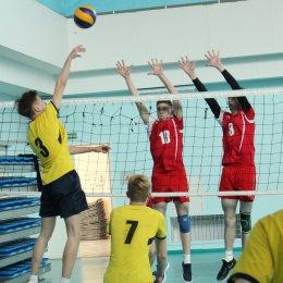 Лидеры открытого первенства области по волейболу начали турнир без поражений