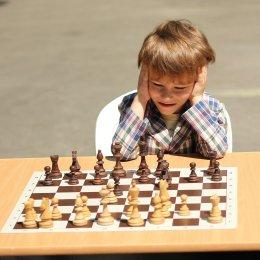 Шахматный праздник в городском парке