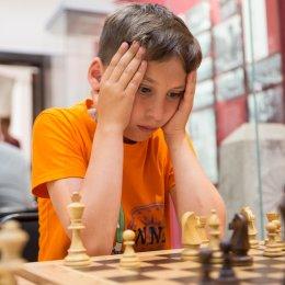 В первенстве ДФО по шахматам принимают участие 17 сахалинцев