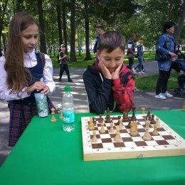 Шесть сеансеров в течение нескольких часов экзаменовали любителей шахмат