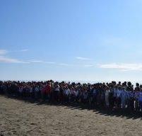 Участниками «Кросса нации-2018» в Поронайске стали свыше 600 человек