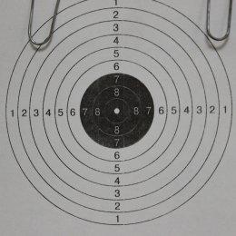 В Горнозаводске выявили победителей соревнований по пулевой стрельбе