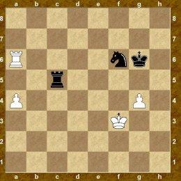 Сахалинские шахматисты сыграли товарищеский матч со сборной Хабаровского края