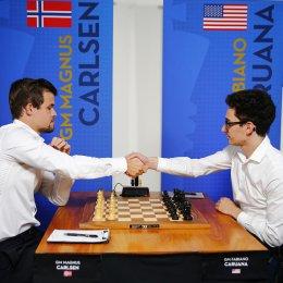 Битва двух К: кому отдают предпочтение островные шахматисты?