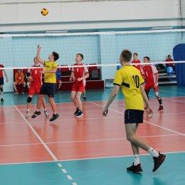 В мужском чемпионате области принимают участие девять команд