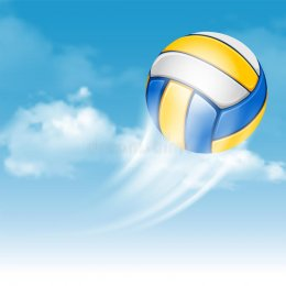 Сегодня в Воронеже завершится финал «Летающего мяча»