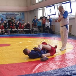 В Александровске-Сахалинском назвали имена победителей регионального турнира