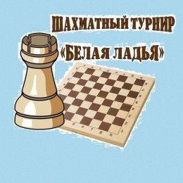 Команда лицея № 2 одержала первую победу в финале «Белой ладьи»
