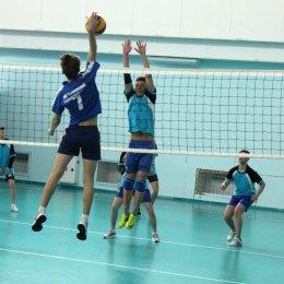 11 команд вышли на старт первенства области по волейболу