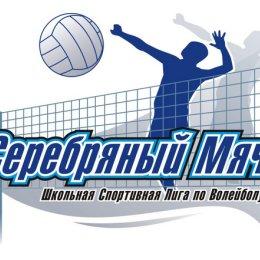 В Углегорском районе над сеткой взлетел «Серебряный мяч»