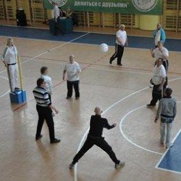 Фестиваль мини-волейбола