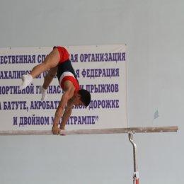 Сахалинские гимнасты примут участие в международном турнире