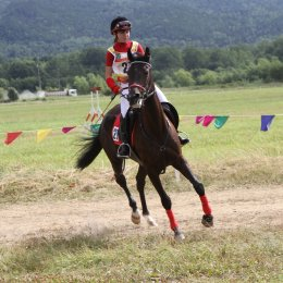 Сахалинцы примут участие в чемпионате ДФО по конному спорту