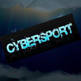 Юные борцы приняли участие в турнире по киберспорту