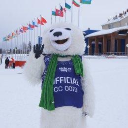 Островитяне претендуют на медали Кубка России по лыжным гонкам