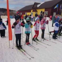 Лыжники старше трех лет состязались в Горнозаводске