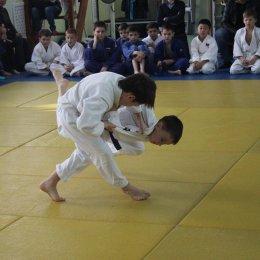 Юные дзюдоисты проверят себя в командном турнире