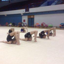 Сахалинские «художницы» готовятся к сезону в Хорватии