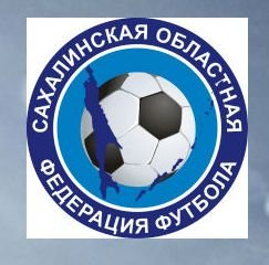 В воскресенье состоится турнир среди команд национальных диаспор