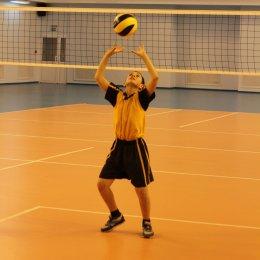 Кто хочет заниматься волейболом?