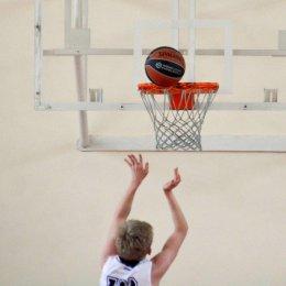 Одиннадцать баскетбольных надежд