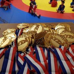 Сахалинские самбисты завоевали восемь медалей международного турнира