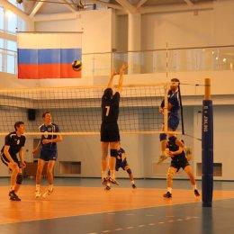 Фотогалерея чемпионата области