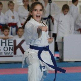 Островные каратисты завоевали три медали Спартакиады учащихся РФ