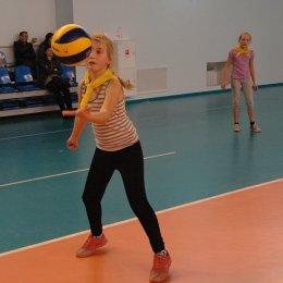 В волейбольном турнире примут участие юные спортсмены не старше 10 лет