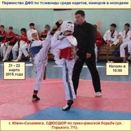 В Южно-Сахалинске состоится первенство ДФО по тхэквондо