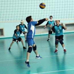 В пошедшем сезоне воспитанники «СШ по волейболу» стали победителями первенства области во всех возрастных группах