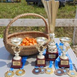 В Южно-Сахалинске выявили лучших в дисциплине «выездка»