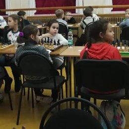 Сахалинские шахматисты принимают участие в этапе детского Кубка России