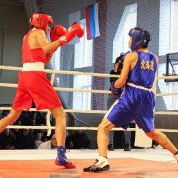 Островные боксеры одержали победу над командой Хоккайдо