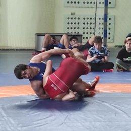 Борцы из трех регионов ДФО участвовали в открытом региональном турнире в Невельске