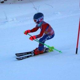 Спортшкола олимпийского резерва по горнолыжному спорту и сноуборду продолжает набор детей