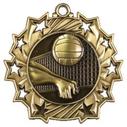 Победителями первенства области стали команды «СШ по волейболу»