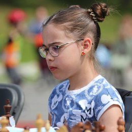 Шахмат много не бывает