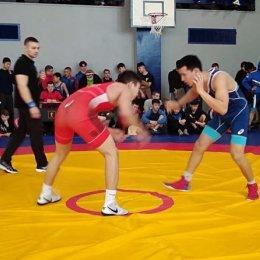 Борцы из Южно-Сахалинска завоевали четыре медали Всероссийского турнира