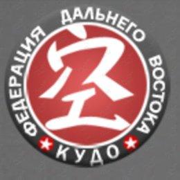 Сахалинские кудоисты завоевали шесть медалей открытого Кубка Приморья